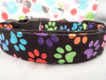Dog Collar Colorful Paw Prints Rescue Me Collar