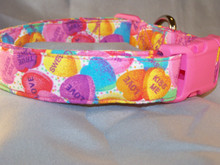 Valentine's Candy Conversation Hearts Dog Collar