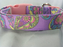 Bright Colorful Paisley on Purple Dog Collar