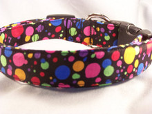 Colorful Dots on Black Dog Collar
