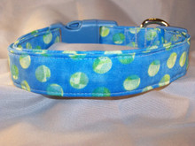 Lime Green Dots on Blue Dog Collar