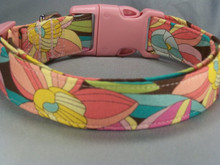 Abstract Daffodils on Brown Dog Collar