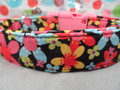 Bright Flowers on Black Dog Collar  Rescue Me Dog Collar
