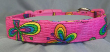 Bright Butterflies on Hot Pink Seersucker Dog Collar