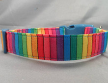 Rainbow Striped Dog Collar