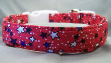 Patriotic Stars on Red Dog Collar