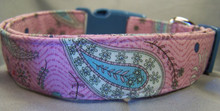 Fun Blue Paisley on Purple Dog Collar