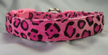 Hot Pink Leopard Dog Collar Rescue Me Collar