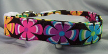 Rainbow Flowers on Black Dog Collar rescue me dog collar