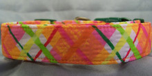 Tangerine Dream Dog Collar