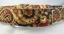 Black with Brown and Tan Scroll Dog Collar  rescue me collar