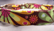 Colorful Flowers on Brown Dog Collar
