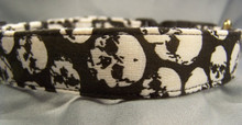 Scary Skulls Dog Collar Rescue Me Dog Collar