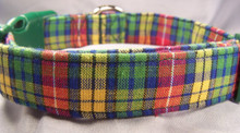 Blue, Yellow, Red, & Green Plaid Dog Collar