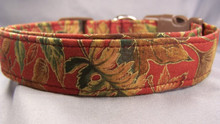 Fall Leaves on Red Dog Collar