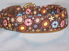 Pastel Flowers on Brown Dog Collar
