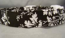 Elegant Black & White Flower Scroll Dog Collar