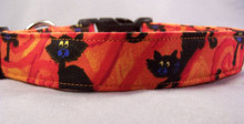 Black Cats on Orange Halloween Dog Collar