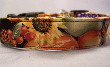 Autumn Fruit and Flowers on Black Dog Collar