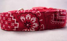 Classic Red Bandana Print Dog Collar