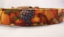 Fruit Harvest Autumn Dog Collar