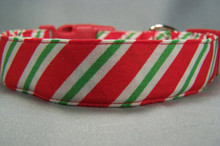 Candycane Stripe Christmas Dog Collar