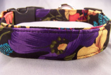 Colorful Tropical Flowers on Black Dog Collar