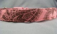 Brown Paisley on Salmon Pink Dog Collar