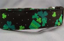 Pots of Shamrocks St Patrick's Dog Collar