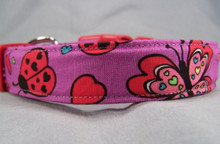 Butterfly Hearts Dog Collar