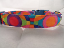 Dog Days Colorful Circles Cute Dog Collar