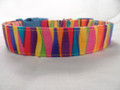 Dog Days of Summer Colorful Stripe Funky Dog Collar