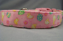 Eggs and Chicks on Pink Easter Dog Collar