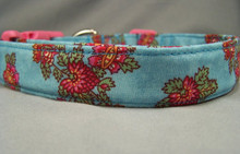 Pretty Berry Flowers on Blue Dog Collar