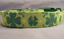 Green Shamrocks Dog Collar