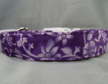 Lilac Scroll on Purple Dog Collar