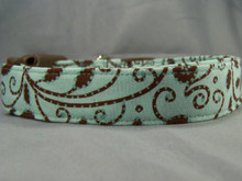 Brown Scroll on Aquamarine Dog Collar