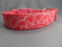 Watermelon Pink Paisley Dog Collar
