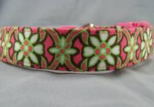 Chocolate and Lime Scroll on Pink Dog Collar