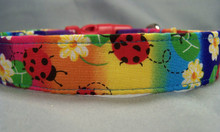 Rainbow Ladybug Dog Collar Rescue Me Collars