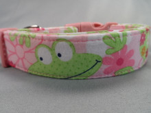 Pink Flowers and Frogs Dog Collar