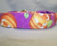 Happy Jack O Lanterns on Purple Dog Collar Rescue Me Collar
