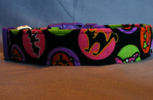 Fun Neon Circles Halloween Dog Collar