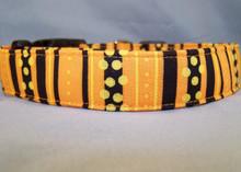 Halloween Stripe Dog Collar Rescue Me Collar