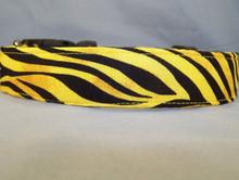 Yellow Zebra Stripe Dog Collar