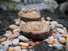 Fairy Garden Log Stepping Stone