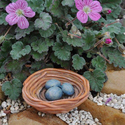 Fairy Garden Birds Nest