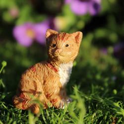 Fairy Garden Kitten - Buttercup