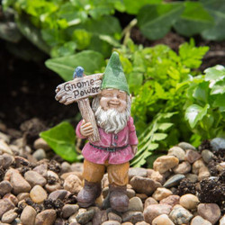 Fairy Garden Gnome - Buddy