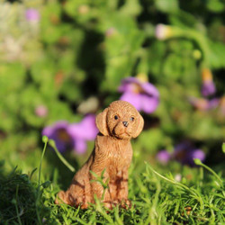 Fairy Garden Ginger The Puppy